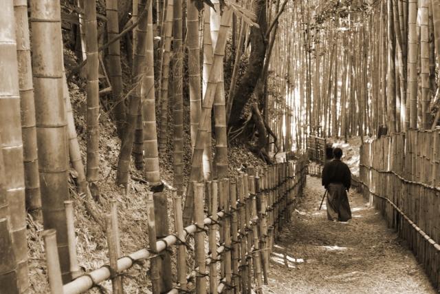 武士とは?武士の起源や現代でも通用する「武士道」の考えを解説